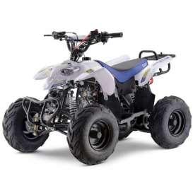 Quad PREDATOR PRO 110cc