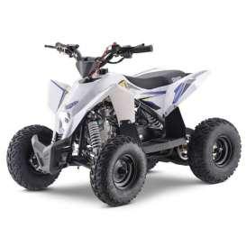 Quad infantil RADIX 90cc