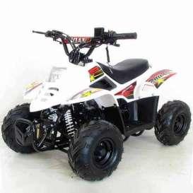 Quad RAPTOR PRO 110cc