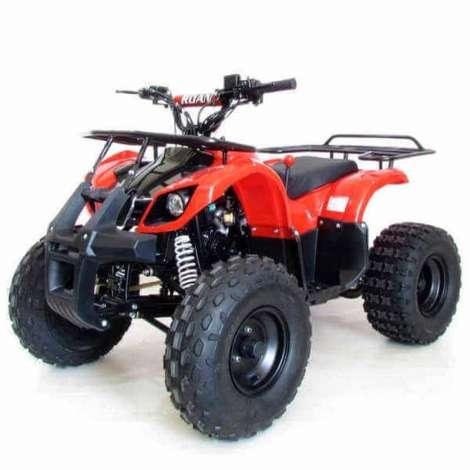 Quad PANDA PRO 110cc R8