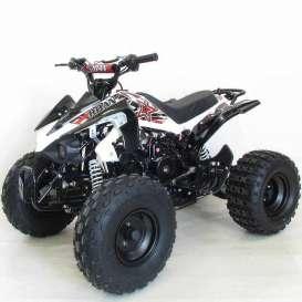 Quad PANTERA PRO 125cc R8