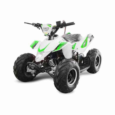 miniQuad APACHE NRG 50cc R6