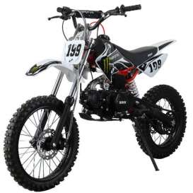 Pit Bike CAMEL 125cc Cross