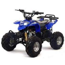 Quad 110cc PREDATOR R6
