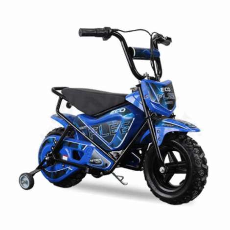 miniMoto ECO FLEET 250W