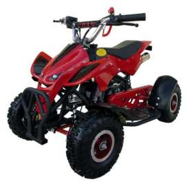 mini Quad Infantil ECO 49cc