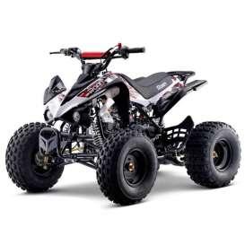 Quad 110cc PANTERA R8 Roan