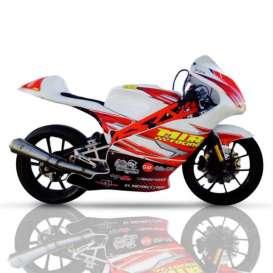 MiniGP MIR 250cc PREMOTO4